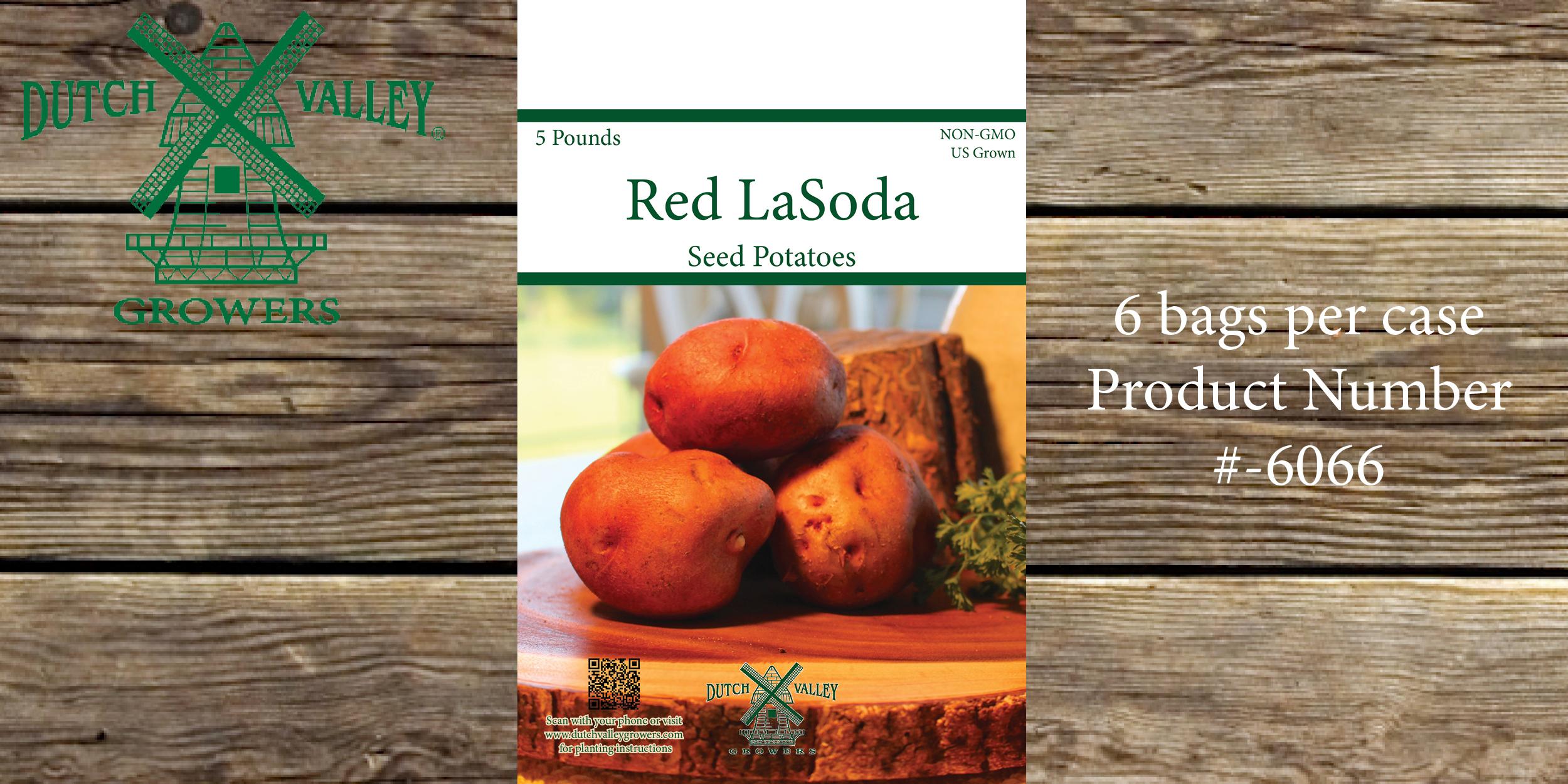5# Red LaSoda