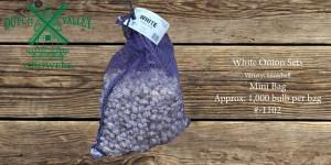 10# White Onion Sets Mini Bag