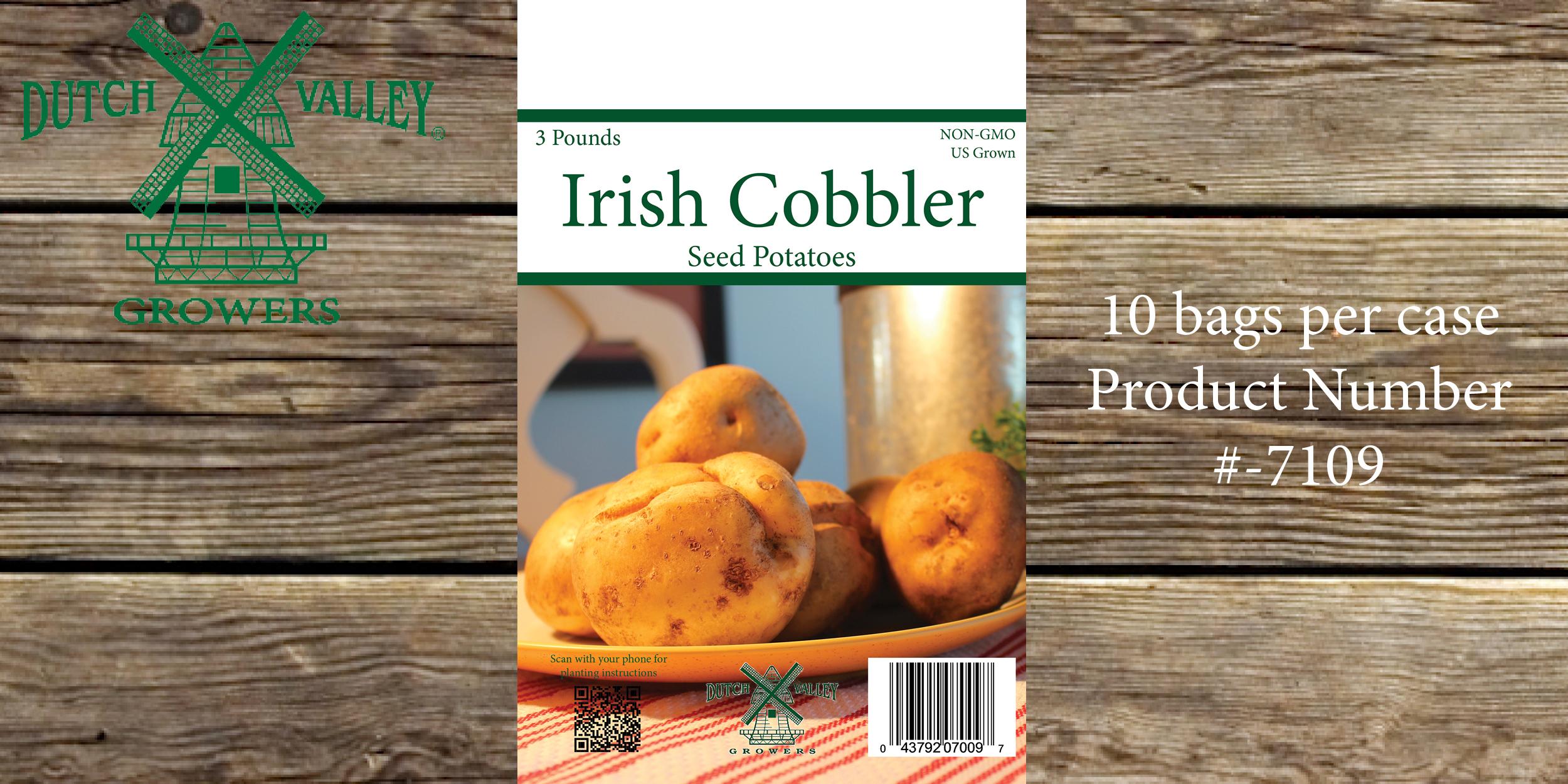 3# Irish Cobbler
