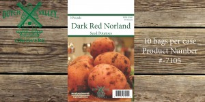 3# Red Norland