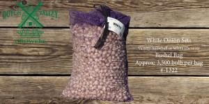 32# White Onion Sets Bushel Bag